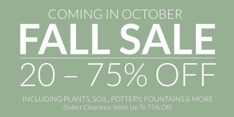 Griggs Digs: Fall sale coming, plus rose growing workshop!